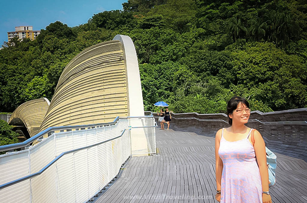 Travel Blogger di Henderson Waves Bridge