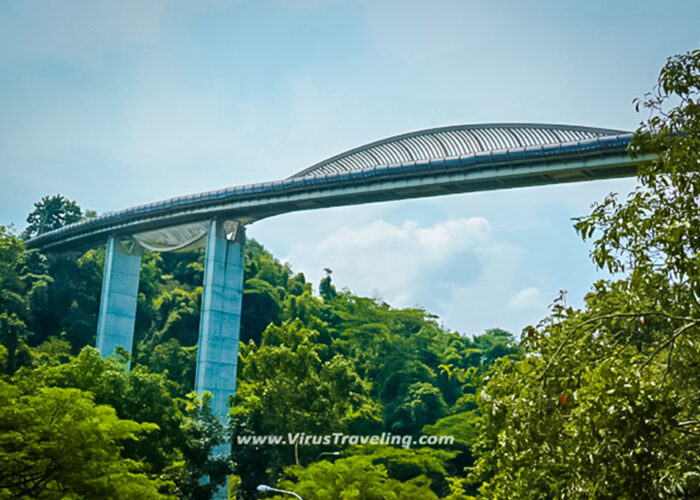 Henderson Waves Bridges Singapore