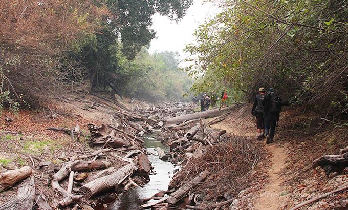Sungai Kruing Palangkaraya Kalimantan