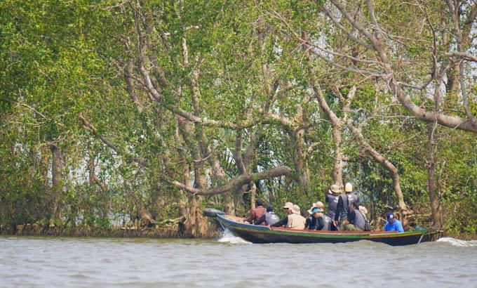 Pulau Kaget Habitat Bekantan