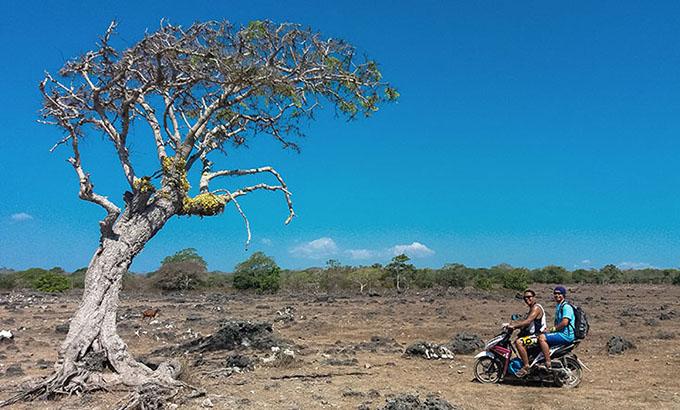 Pulau Semau yang Instagramable