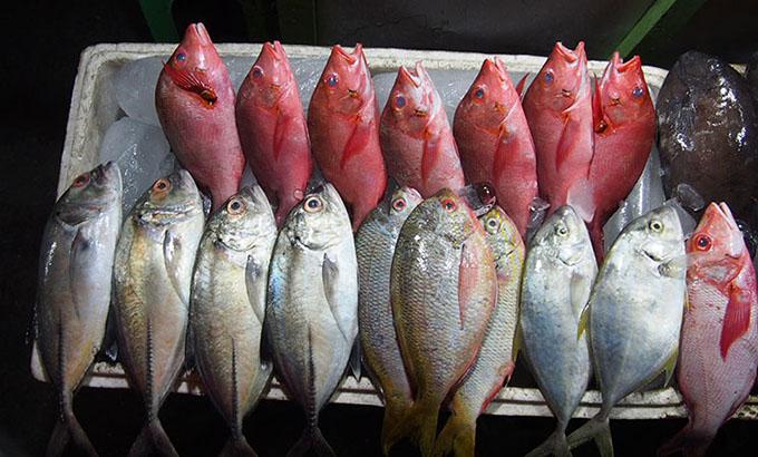 Seafood Kupang