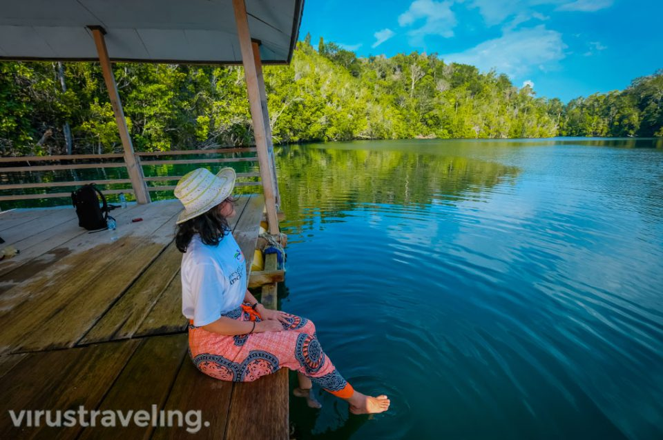 Stingless Jellyfish di Danau Mariona Togean