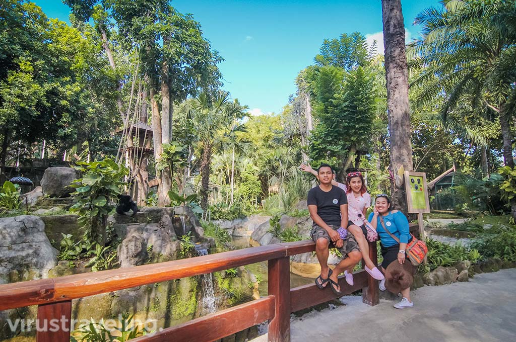 Bali Zoo Park Attraction