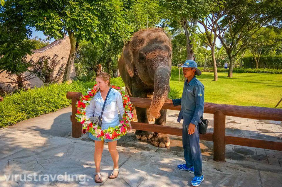 Atraksi gajah di Kampung Sumatra by virustraveling.com