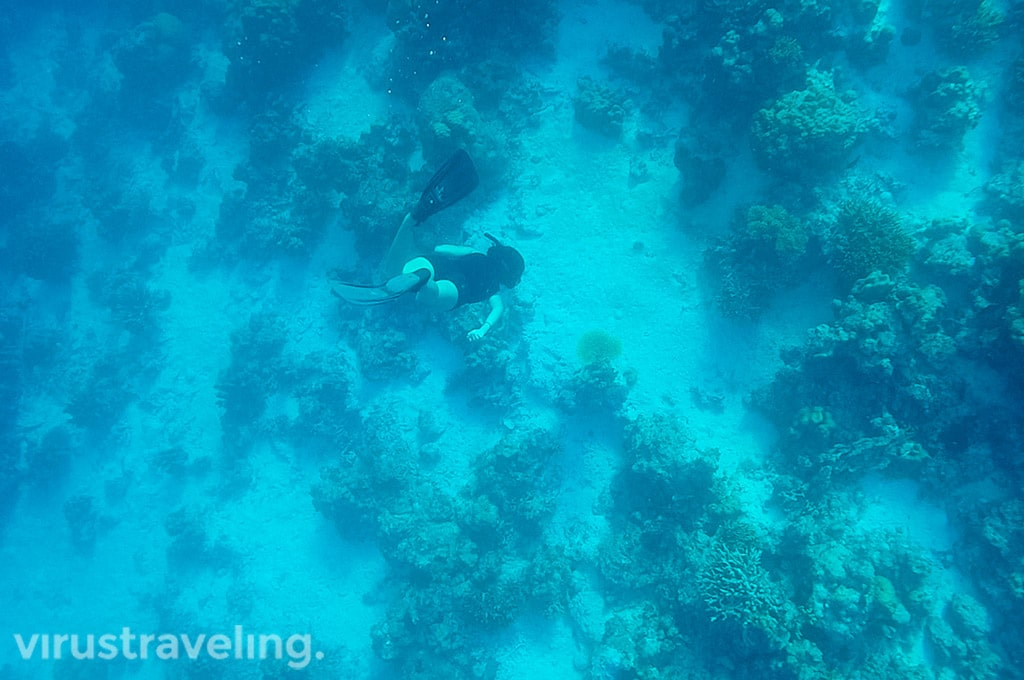 Snorkeling di Togean Islands