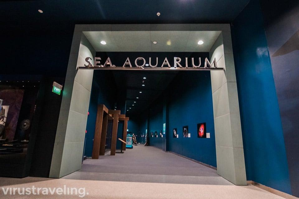pintu masuk ke area aquarium