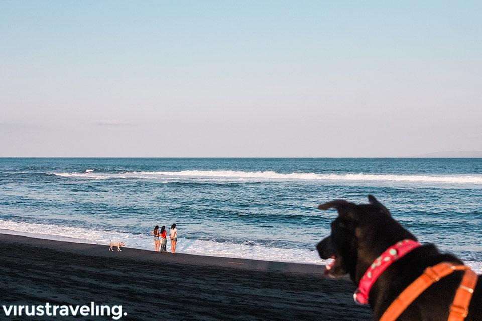 Bermain di Pantai Bali