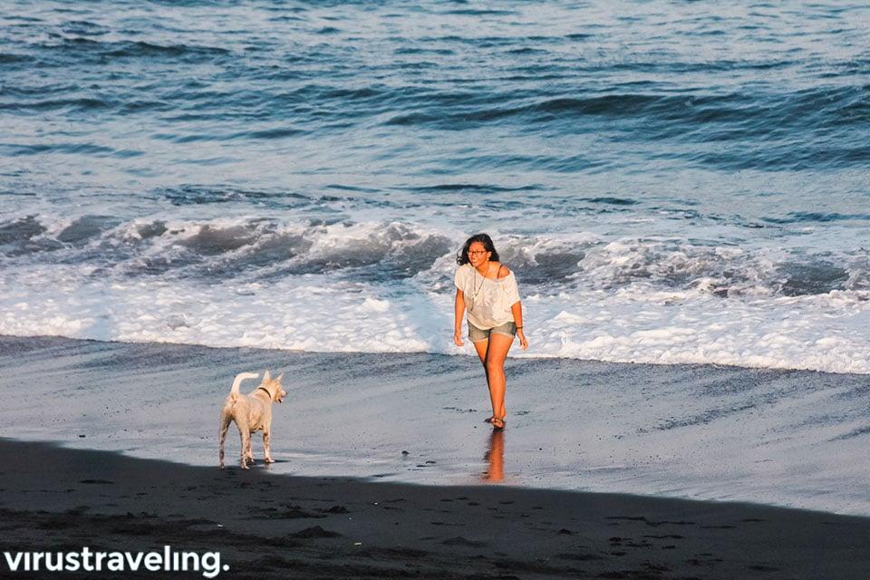 Main dengan anjing di Pantai Saba
