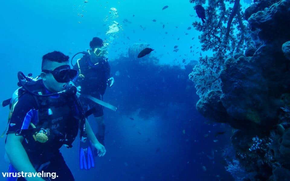 Diving di USS Liberty Shipwreck