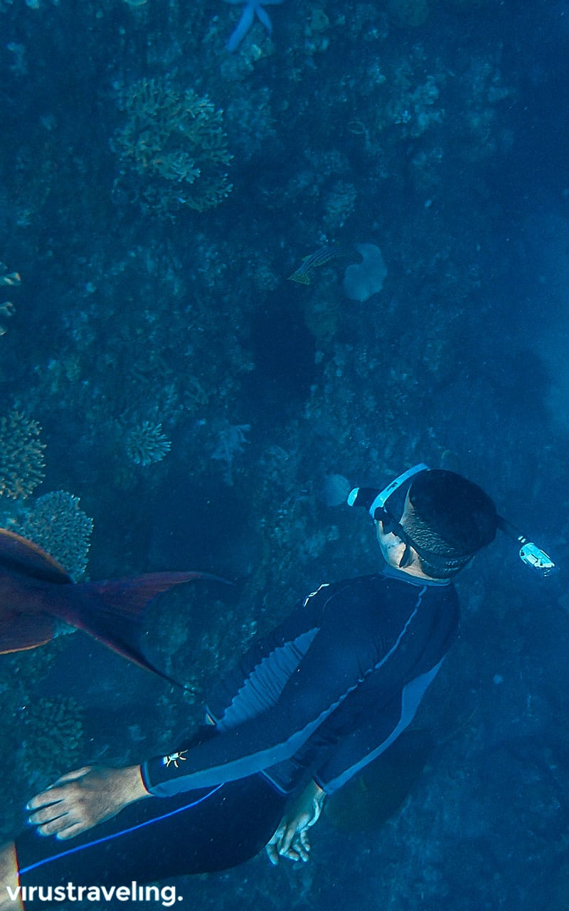 Pengalaman seru snorkeling di USS Liberty Shipwreck
